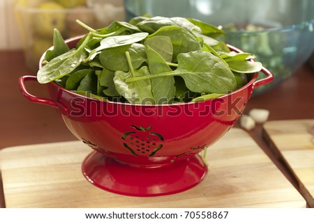 Fresh spinach leaves for a salad during draining in a red strainer - stock photo