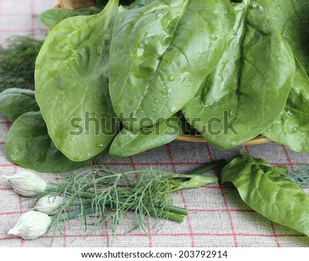 Fresh spinach leaves in a wicker basket with vegetables - stock photo