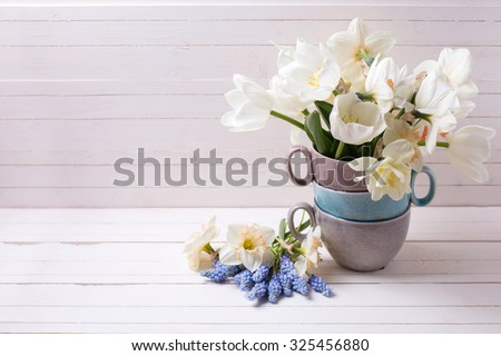 Fresh spring daffodils,  white tulips flowers, muscaries flowers   on white wooden planks. Selective focus. Place for text. - stock photo
