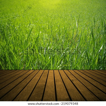 Fresh spring green grass and wood floor background - stock photo