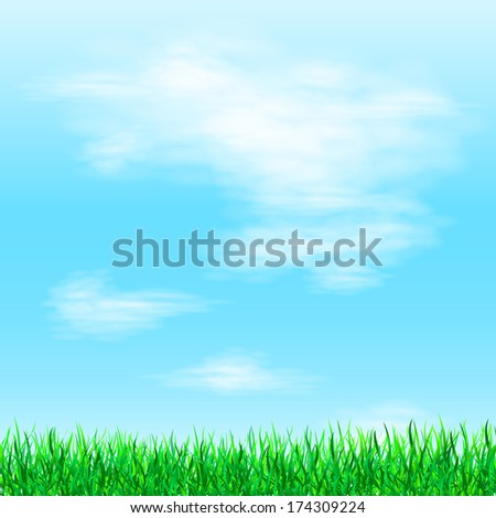 Fresh spring green grass. Beauty natural background  - stock photo