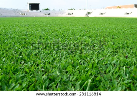 fresh spring green grass in football field - stock photo