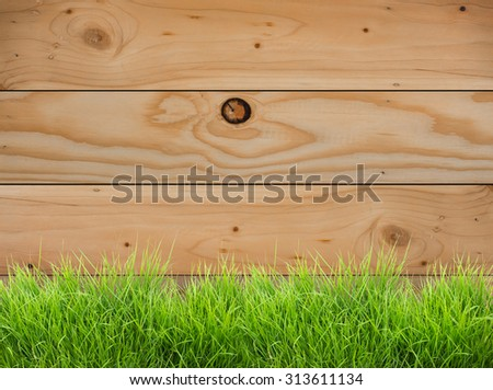 Fresh spring green grass on wood fence background - stock photo
