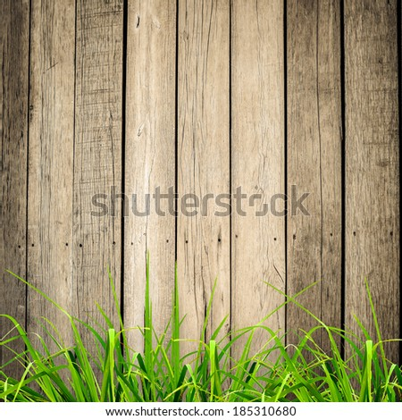Fresh spring green grass over wood fence background - stock photo
