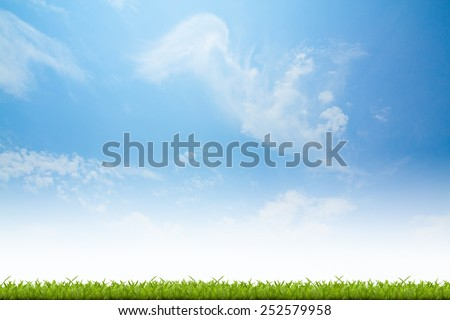 Fresh spring green grass with blue sky background - stock photo