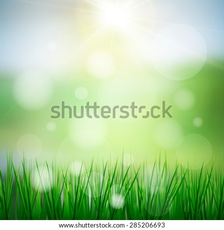 Fresh spring green grass with sun sky background,abstract ,blur ,web,bokeh,colorful, texture, wallpaper,illustration