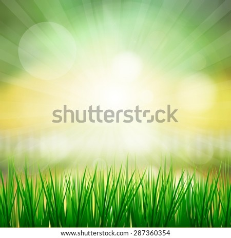 Fresh spring green grass with sun sky background,abstract ,blur ,web,bokeh,colorful, texture, wallpaper,illustration - stock photo