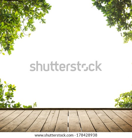 Fresh spring green leaves with wood floor over white. Natural background - stock photo