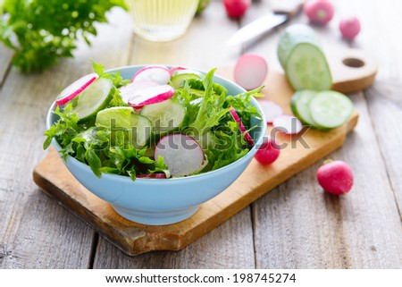 Fresh spring salad from cucumbers and radish - stock photo