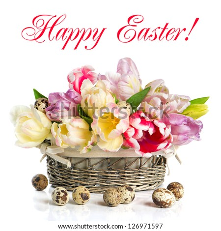 fresh spring tulip flowers with quail eggs. easter decoration on white background. Happy Easter! card concept