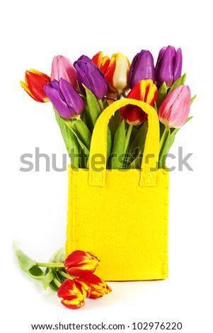 fresh spring tulips on white background - stock photo