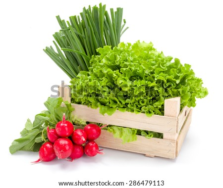 Fresh spring vegetables in wooden crate: radish, scallion and lettuce