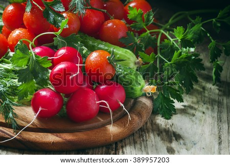 Fresh spring vegetables, radishes, cucumbers, tomatoes and herbs on dark wooden background, selective focus