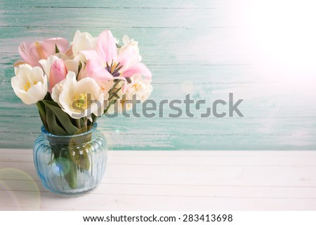 Fresh  spring white and pink  tulips and narcissus in  blue vase in ray of light on white painted wooden background against turquoise wall. Selective focus. Place for text.  - stock photo