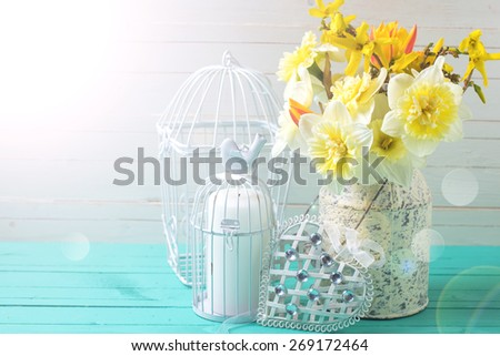Fresh  spring yellow daffodils flowers, decorative bird cage and heart  in ray of light on turquoise  painted wooden planks against white wall. Selective focus. Place for text.  - stock photo