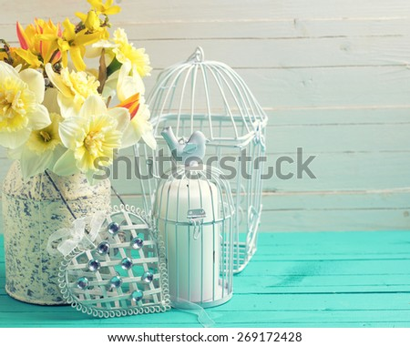 Fresh  spring yellow daffodils flowers, decorative bird cage and heart on turquoise  painted wooden planks against white wall. Selective focus. Place for text. Toned image. - stock photo