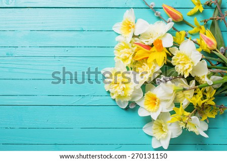 Fresh  spring yellow narcissus, tulips  flowers  on green painted wooden planks. Selective focus. Place for text.  - stock photo