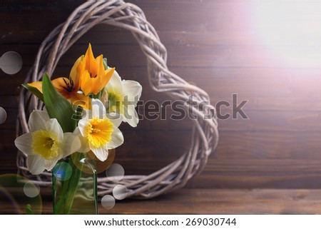 Fresh  spring yellow tulips and daffodils  flowers and decorative heart in ray of light  on dark  painted wooden background. Selective focus. Place for text.  - stock photo