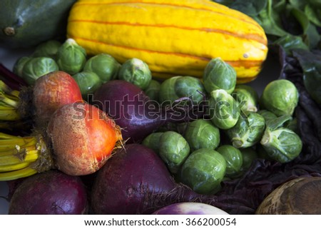 Fresh squash, brussels sprouts, and beets for a delicious winter soup. - stock photo