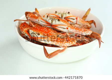 Fresh steamed blue swimmer crab in white bowl. - stock photo
