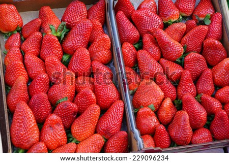 Fresh strawberries for sale at the market - stock photo