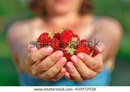 Fresh strawberries handpicked from strawberry farm.
