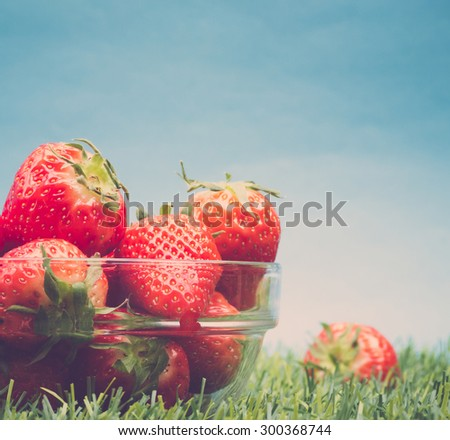 Fresh strawberries in glass bowl in grass against blue sky - stock photo