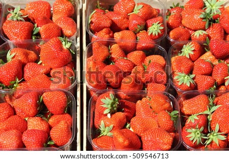 Fresh strawberries in rows for sale in a greengrocery