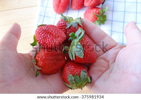 fresh strawberries in woman hand - stock photo
