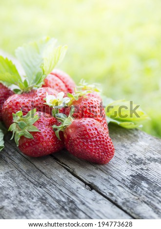 fresh strawberries on dark wooden with flower, copy space - stock photo
