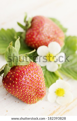 Fresh strawberries with leaves and flowers on the boards