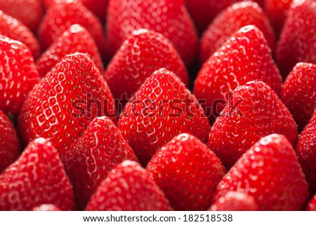 fresh strawberry close up. - stock photo
