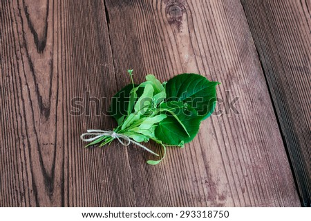 fresh string bud green herbs linden wooden brown table  - stock photo