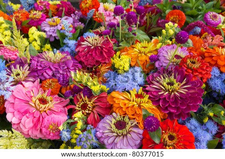 Fresh summer flower bouquet at farm market - stock photo
