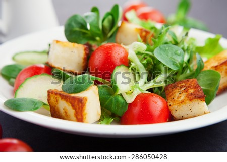 Fresh summer vegetarian salad with cherry tomatoes, spinach and roasted tofu cheese in a plate on dark background, selective focus - stock photo