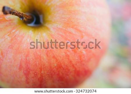 Fresh sweet apple Closeup Macro - stock photo