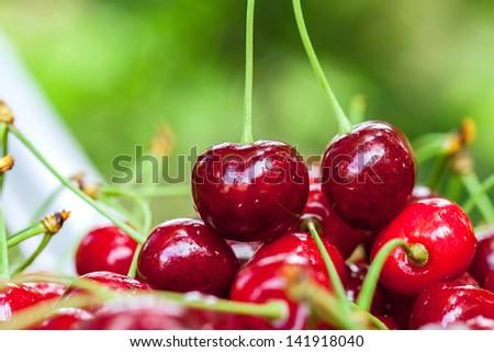 Fresh sweet cherries. Macro image. - stock photo