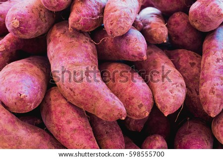 Fresh sweet potato with root at farmer market as a food background