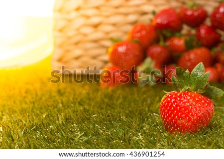 Fresh sweet strawberry isolated on bright sun and many strawberries background. Sun is shining brightly. Green grass. - stock photo