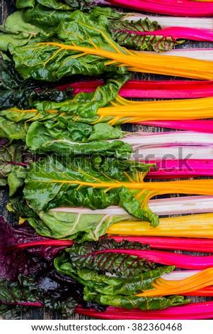 Fresh swiss rainbow chard - stock photo