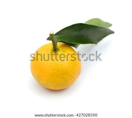 fresh tangerine with leaf isolated on white  - stock photo