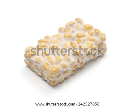 fresh tempeh isolated on white background, indonesian food, vegetarian food, soybean product - stock photo
