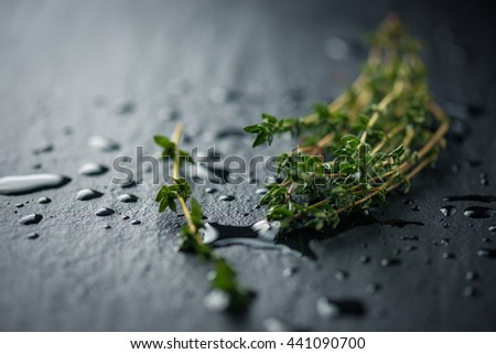 Fresh Thyme bunch - stock photo