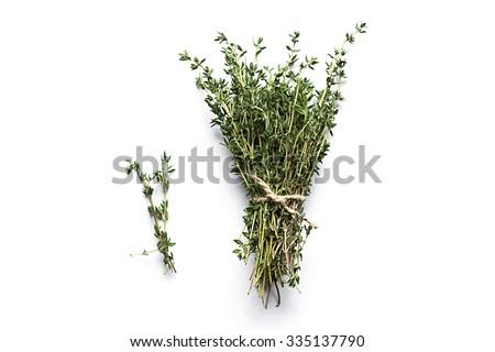 Fresh thyme isolated on white - stock photo