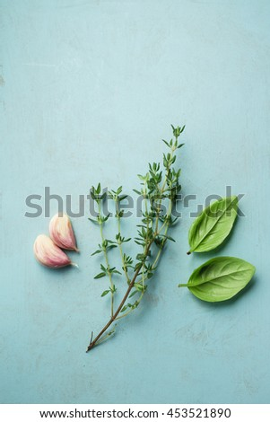 Fresh thyme sprig with basil leaves and garlic - stock photo