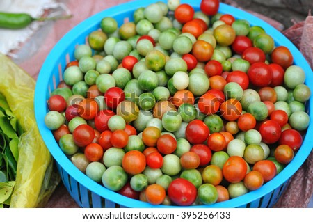 fresh tomatoes at the market