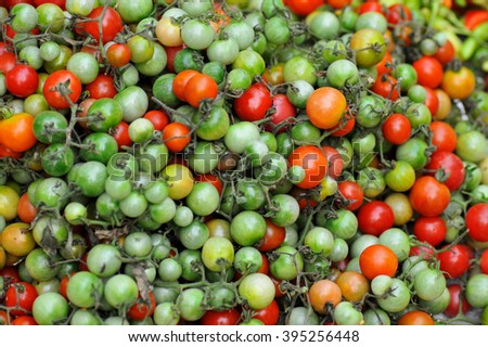 fresh tomatoes at the market - stock photo