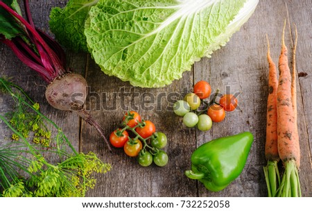 Fresh tomatoes, cabbage, radish, paper, garlyc and dill on wooden table, top view