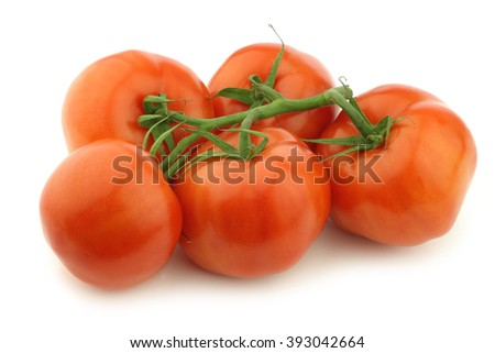 fresh tomatoes on the vine on a white background - stock photo