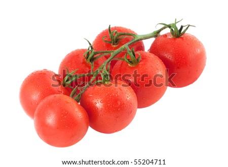 Fresh tomatoes on the white background - stock photo